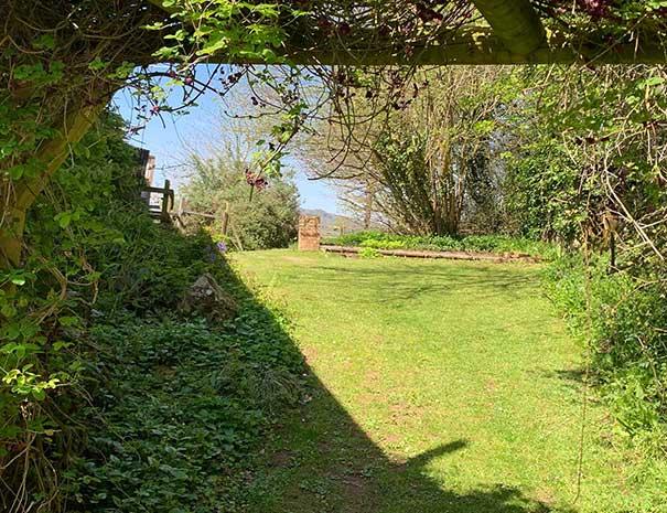 garden-605x465